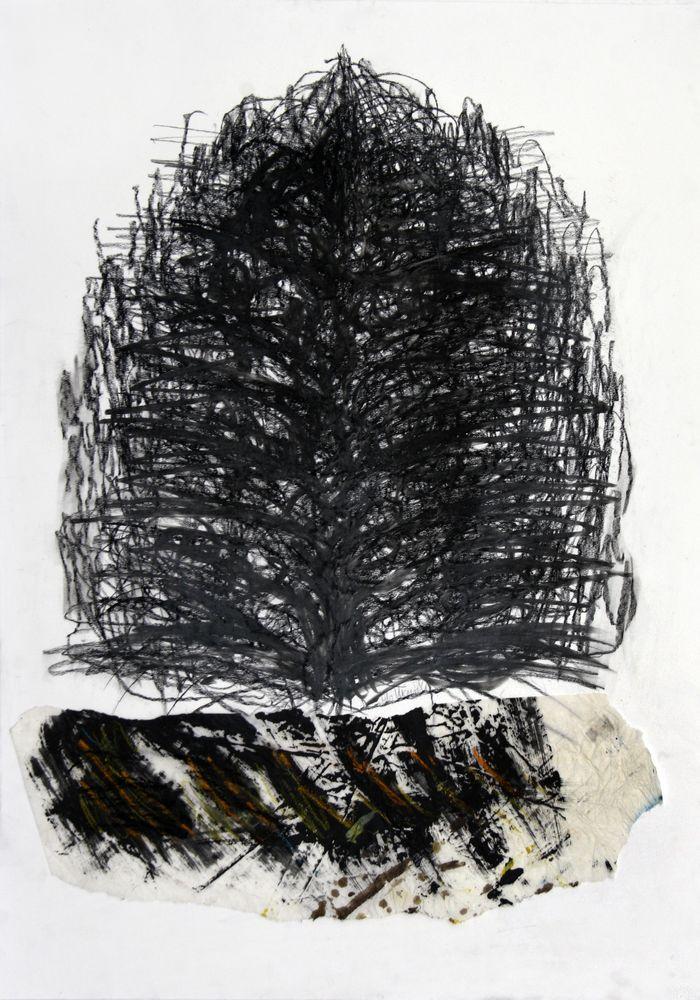 Baum - Dialog, Bleistift, Kohle, 70 x 50 cm