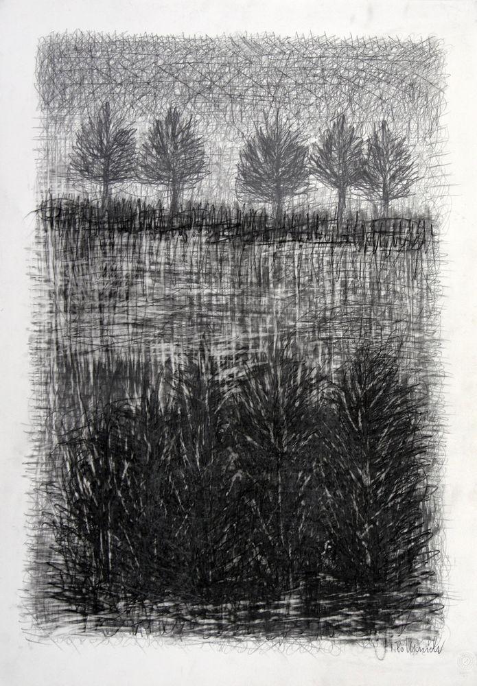 Gitterstrukturen, Bleistift, Kohle, 73 x 51 cm