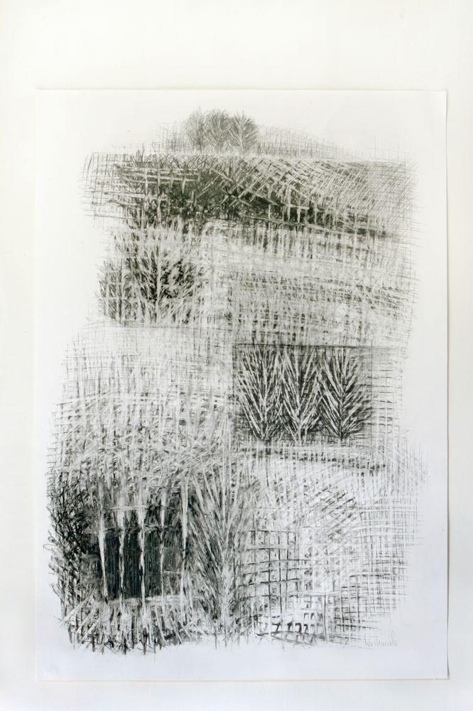Magnetische Gitterstruktur, Bleistift, Kohle, 70 x 50 cm